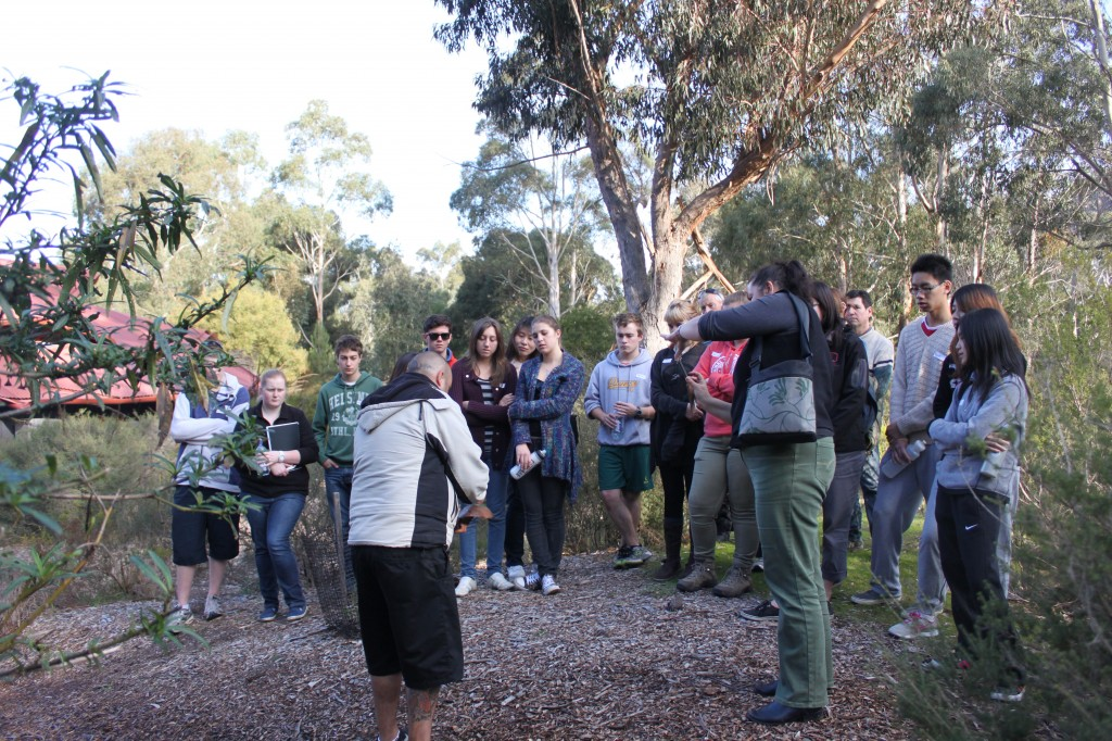 Bush food fibre and medicine walk
